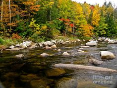 Fall In New Hampshire Photograph  - Fall In New Hampshire Fine Art Print