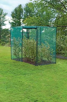 RaisedBeds.com - Crop Cage, $69.95 (http://raisedbeds.com/crop-cage/)