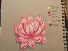 Lotus flower in prismacolor pencils on grey toned strathmore paper #lotus