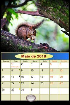 calendarioMaiode2018
