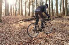 Full Windsor photo-shoot featuring cyclocross bike in the woods