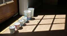 Yogurt containers, traslucent in the sun | Flickr - Photo Sharing!