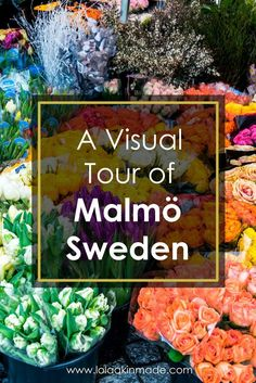A visual guide to exploring Malmö, Sweden. A Swedish city with an incredible food scene, located just 30 minutes from Copenhagen. | Geotraveler's Niche Travel Blog