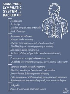 Antiviral remedies immune system Branch Basics Signs Your Lymphatic System is Backed Up Health And Wellness, Health Tips, Health Fitness, Fitness Hacks, Health Recipes, Gut Health, Workout Fitness, Personal Wellness, Brain Health