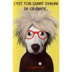 Carte Pets Rock C'est ton Quart d'Heure de Célébrité... Je pense à Toi ! - Cadeau Maestro