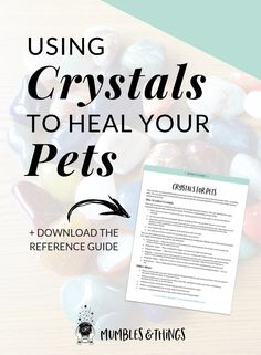 The Basics for Using Crystals to Heal Your Pets — Mumbles & Things Blog — Click through to read about how your pets can benefit from crystal healing (and download the FREE guide)  #ontheblognow #crystallovers #crystalhead #crystallover #crystalpower #crystalstones #crystalmeanings