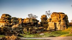 Brimham Rocks in the sunshine, North Yorkshire.