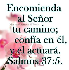 Tu guías mis pasos SEÑOR Grace Quotes, Wisdom Quotes, Christian Posters, Christian Quotes, Strong Faith, Old And New Testament, Gods Grace, Dear Lord, God Is Good
