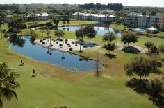 Pinebrook Ironwood Golf Club 4260 Ironwood Circle, Bradenton FL, 34209 Phone: (941) 792-3288 Golf Clubs, Golf Courses, Photo Galleries, Tennis, Phone, Telephone, Mobile Phones