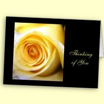 Yellow Rose Note Cards with brilliant black accents.