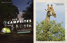 Our April issue features 7 of the best campsites in Kruger, a winding exploration of a rejuvenating Eden we like to call Knysna, affordable Mauritius and more. Kruger National Park, National Parks, Knysna, Mauritius, Campsite, South Africa, Moose Art, Magazine, Explore