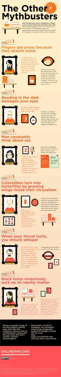 Algunas leyendas urbanas #infografia #infographic