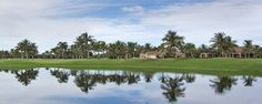 Grey Oaks Naples FL Real Estate
