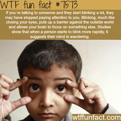 Blinking during a conversation - WTF fun facts