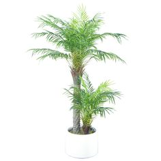 New Artificial Areca Palm Trees With 33 Leaves Small Palm Trees, Small Palms, Leaves, Plants, Ideas, Plant, Thoughts, Planets