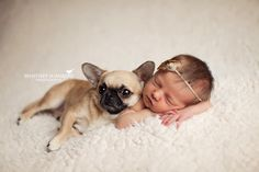 Newborn Baby with dog © Whitney Summers Photography