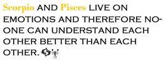 scorpio man pisces woman Aquarius Pisces Cusp, Scorpio Love, Scorpio Girl, Pisces Woman, Scorpio Men, Scorpio Facts, Cute Quotes, Funny Quotes, Zodiac Horoscope