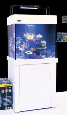 275 Cube Pet Seahorse, Marine Tank, Cube, Pets