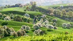 Die 6 schönsten Fernwanderwege in der Schweiz - Blick