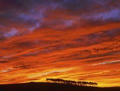 Ian Cameron Fire in the Sky    Roseisle, Moray, Scotland.