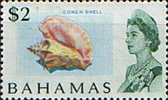 Postage Stamps of Bahamas 1967 Decimal SG 308 Conch Shell Fine Mint Scott 244 Other Stamps For Sale