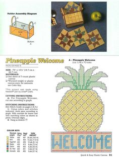 Pineapple Welcome 2/2