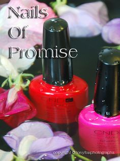 Shellac Nails Of Promise
