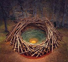 Top 5 Environmental Artists Shaking Up the Art World.  'Clemson clay nest' by Nils-Udo (2005) via designboom