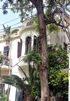 Building,Kalisher street