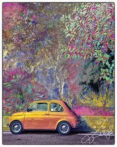 Fiat by Mashael Al-Shuwayer, via Flickr