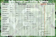 Spring Indoor Seed-Starting Schedule
