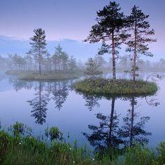 isles in the marsh lake