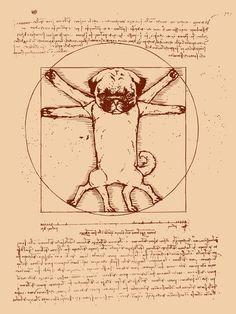 Vitruvian pug Art Print