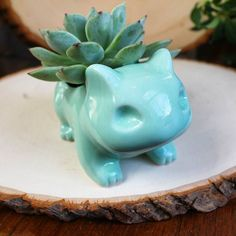 Bulbasaur planter.                                                                                                                                                                                 More