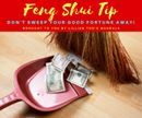 Feng Shui Tip!!! Don't Sweep Your Good Fortune Away! Remember to keep all cleaning equipment – brooms, dustpans and mops out of sight of the rest of your house or office and especially your main door. Cleaning equipment symbolizes bad luck and if found near your entry foyer all good luck and fortune will be swept away. This goes for trash bins and wastebaskets as well…in the office keep them well under your desk and out of sight of the main door of your private office as well. For more Feng…