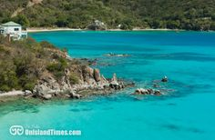 One of my favorite St John snorkeling spots - Hansen Bay. Discover all of St John's top snorkeling spots by visiting www.onislandtimes.com