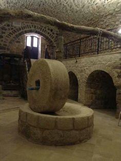حجر معصرة الزيت في منطقة رفيديا نابلس - فلسطين nablus palestine
