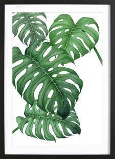 Tropical No.2 - typealive - Ingelijste poster