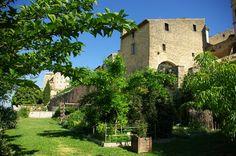 Le jardin conservatoire botanique Couleur Garance #bcvpaca #tourismepaca #sorties #weekend #paca http://bienvenuechezvous.regionpaca.fr/2014/les-visites/consultation/visite-du-jardin-botanique-148