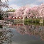Shizuoka Shizuoka Shizuoka, #Japan – #Travel Guide