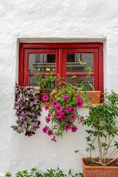 Andalusian window composition by Gene Krasko Photography on Flickr.