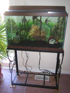 10 gallon fish aquarium stand aquarium ideas pinterest aquarium stand fish aquariums and aquariums