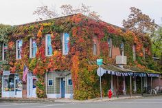 12-9-14 Photo Challenge:  Spotted this old brick building covered with vines in their fall finery in the town of Kelseyville, CA where we had driven to do the Lake Co. Barn Quilt Trail.
