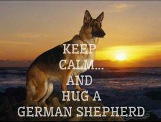 Keep calm? The huggin is sooo easy with my Micky!  BTW..Micky is a German Shepherd.
