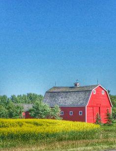 Love barns too