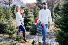 Christmas Tree  Picking the Perfect Tree Santa Hat  Family Love  Tree Farm