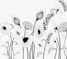 Find Floral Card On White Background stock images in HD and millions of other royalty-free stock photos, illustrations and vectors in the Shutterstock collection. Thousands of new, high-quality pictures added every day. Doodle Drawings, Doodle Art, Easy Drawings, Botanical Line Drawing, Floral Doodle, Flower Doodles, Aesthetic Drawing, Painting & Drawing, Tole Painting