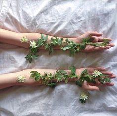 Amor em minhas mãos