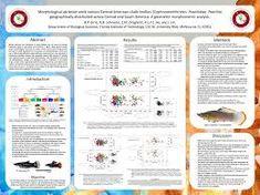 scientific poster examples