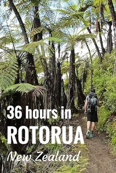 Rotorua is the North Island's (New Zealand) tourism hub - there are heaps of adventure activities (hiking, biking, climbing volcanoes) as well as spas and relaxation. Get amongst it!